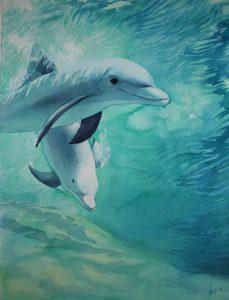 Delfiner af Birgitta Steen